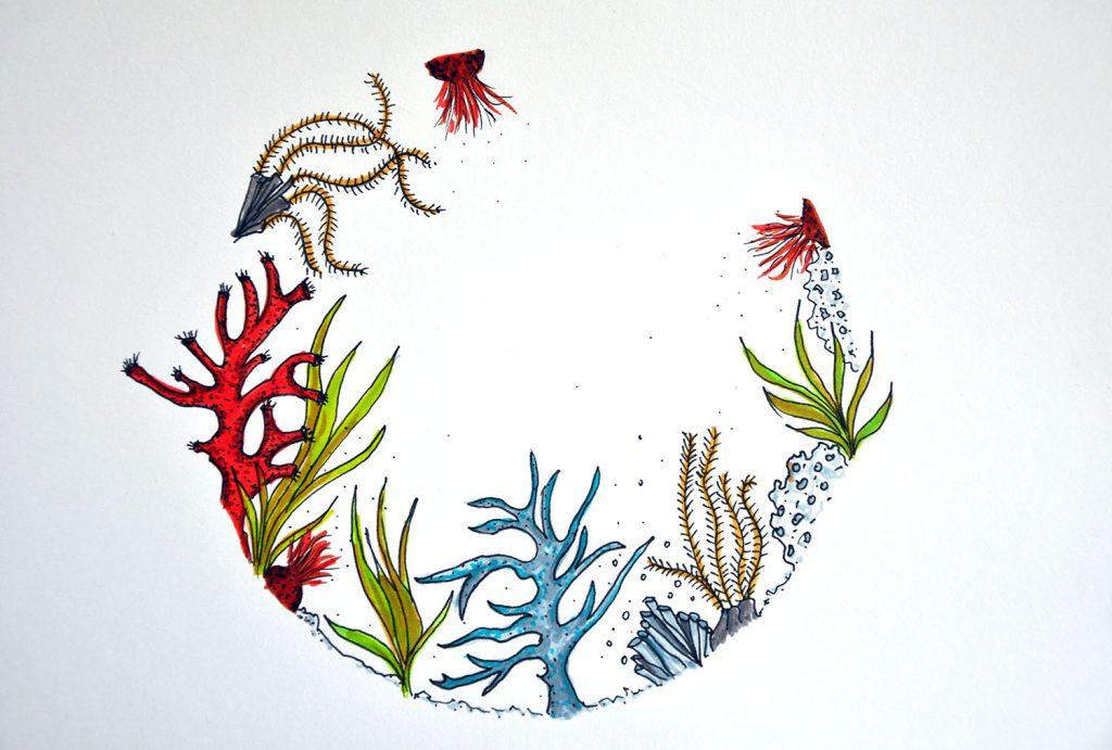 dessin_007-aquarium1