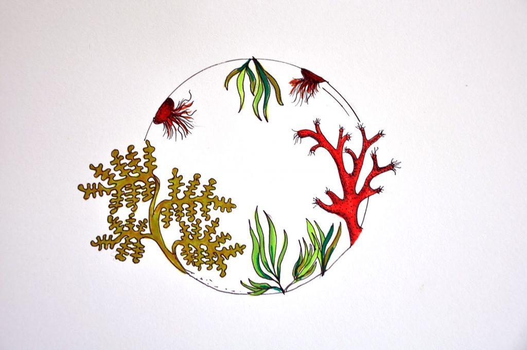 dessin_009-aquarium2